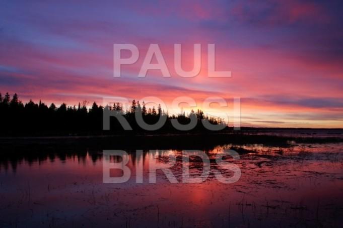 Beavertail cove sunrise late April