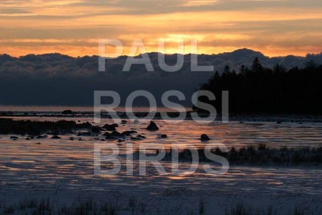 Beavertail Cove sunrise