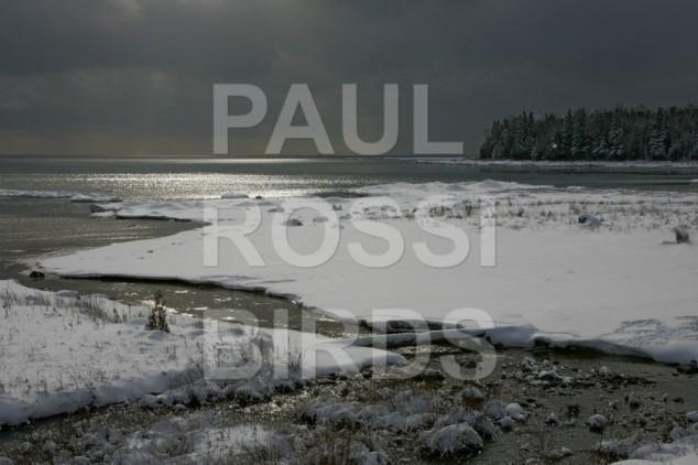 Lake Huron winter at natural spring